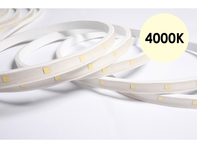 DecaLED® Pro Flex IP65 30 leds/m 24V per mtr 4000K